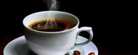 boto-cafe